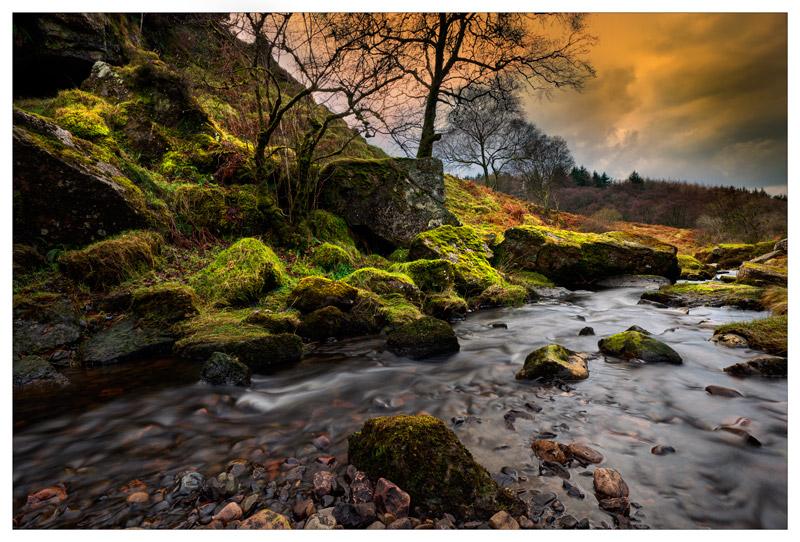 The Hobbit's playground - Ayrshire Gallery