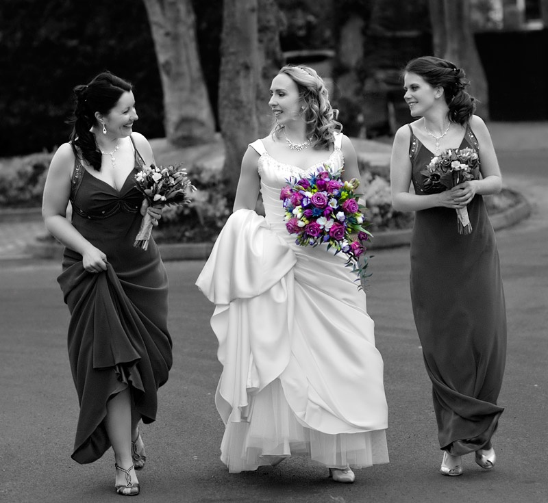 The bride and her Bridesmaids - Portraits, Pets and Events