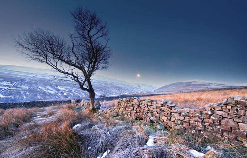 Frosty Morning 3 - Yorkshire Dales - Yorkshire Dales