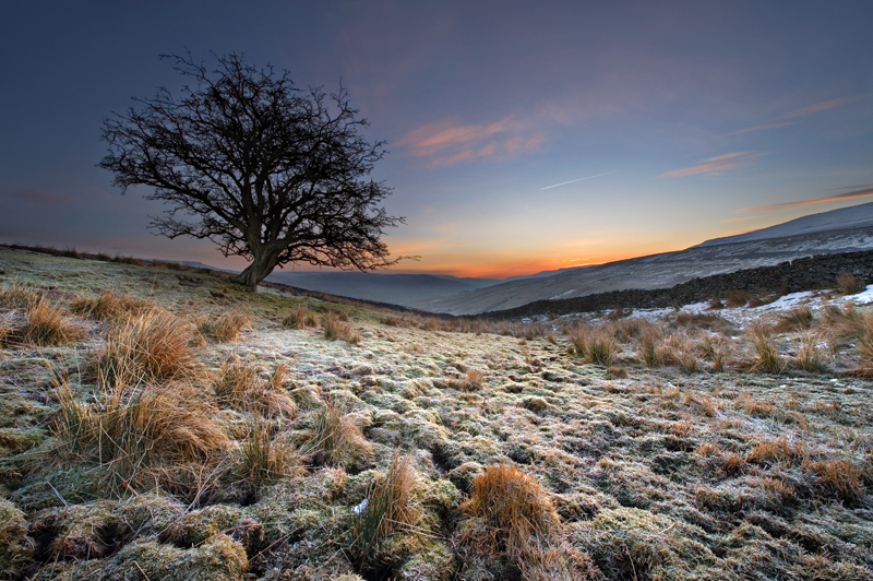 'Frosty Morning 2' - Yorkshire Dales. - Yorkshire Dales