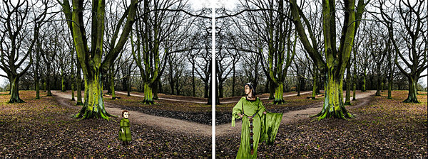 I Went to the Woods - DUALITIES
