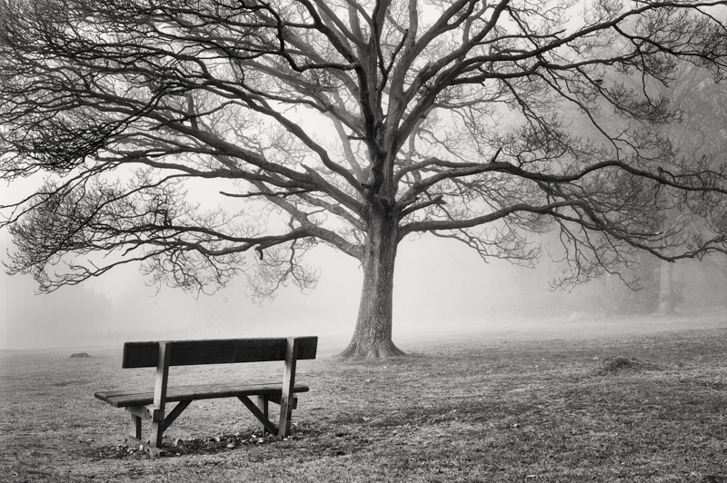 Black and White landscape photography in Surrey
