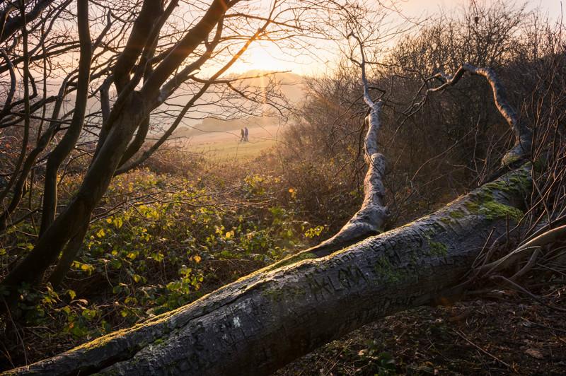 Landscape Photography, Surrey