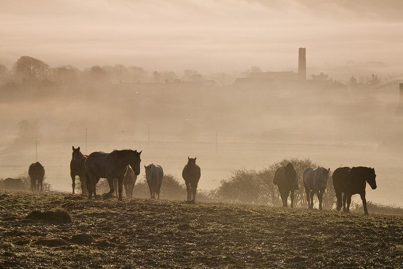 Cloyne - Landscape Ireland