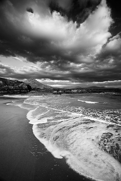 arps6-Kerry - Black and White