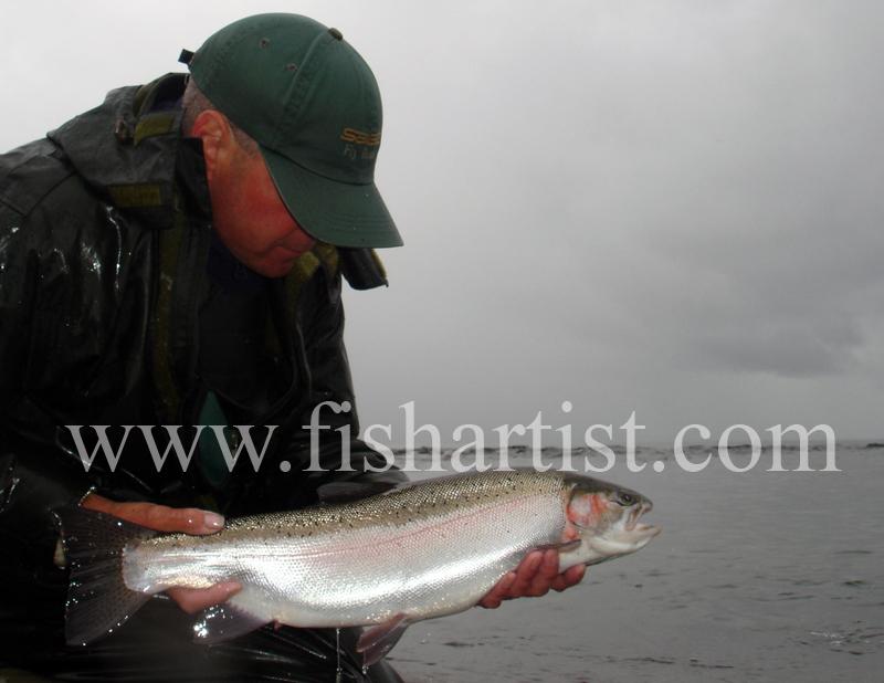 Pretty Waitahanui Hen. - Trout Fishing - Taupo New Zealand.