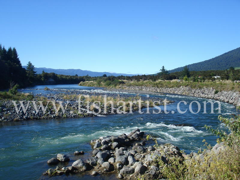 Hydro Pool. - Trout of the Tongariro River.