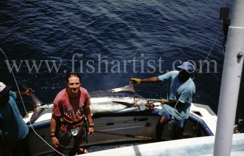 63kg Blue Marlin. - Marlin Fishing.