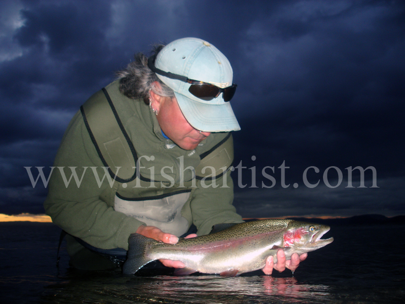 4lb Change of Light Rainbow Jack. - Trout Fishing - Taupo New Zealand.