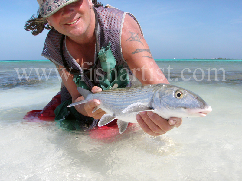 Wild Bonefish 2010. - Bonefishing 2010.
