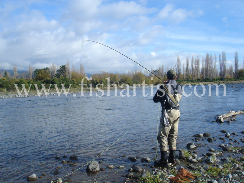 Hooked up on the Tongariro. - Trout Fishing - Taupo New Zealand.