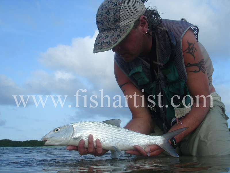 Bonefish Photo - Evening Bonefish. - Bonefish & Tarpon.