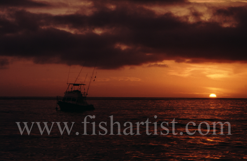 Big Game Fisherman's Sunset. - Marlin Fishing.