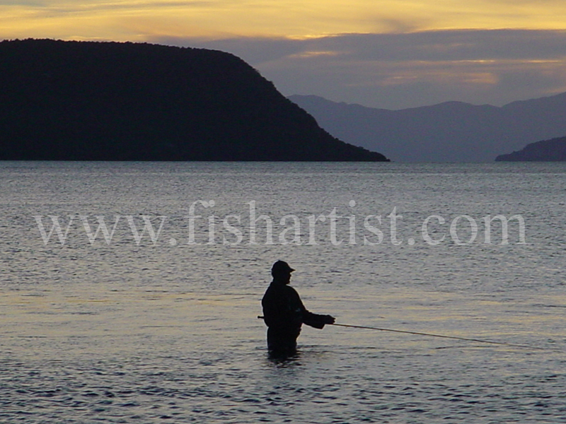 Waitahanui Local. - Trout Fishing - Taupo New Zealand.