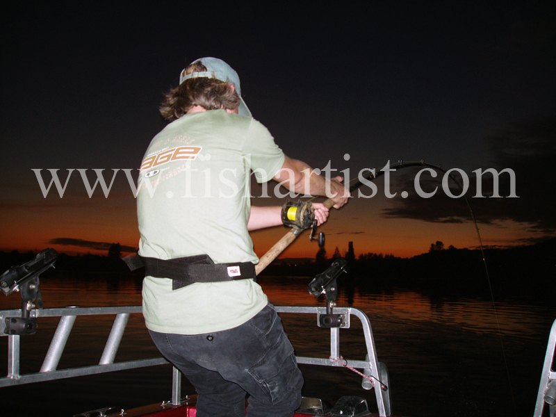 Sunset - Hook Up. - Sturgeon of the Fraser River.