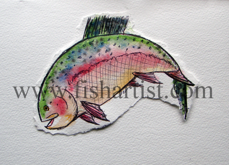 Fresh Run Taupo Trout Leaping. - Watercolours of Taupo Trout.
