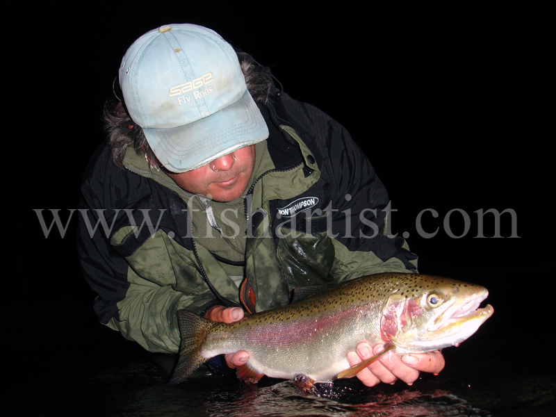Ready to Run Night Caught Taupo Rainbow Jack. - Trout Fishing - Taupo New Zealand.