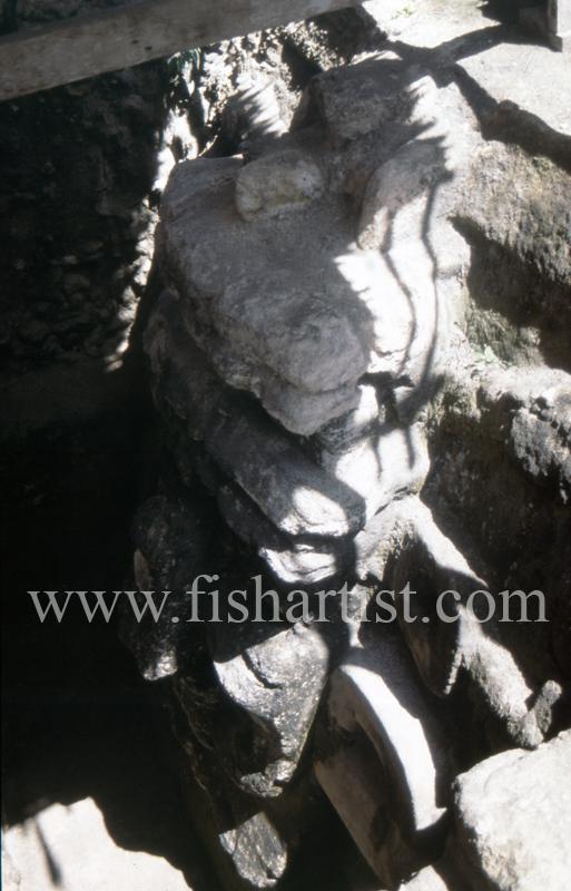 Mayan Stone Carving. - Eyes of a Fisherman.