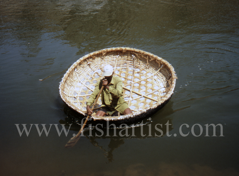 Mahseer Fishing Coracle. - Mahseer Fishing India.