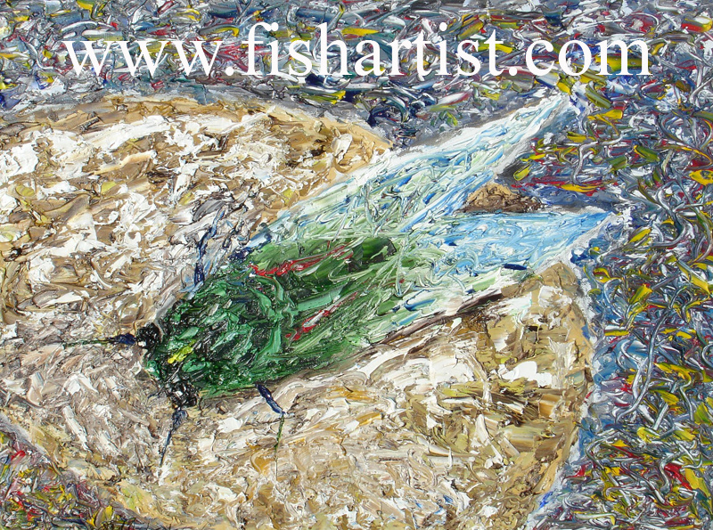 Mad Cicada - Taupo. - Fish Art for Fishermen.