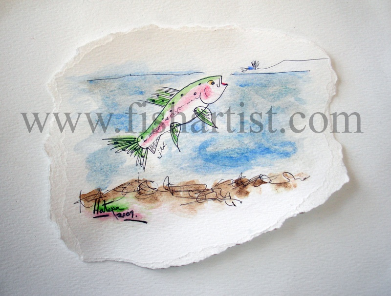Taupo Trout Summer Hen Watercolour. - Watercolours of Taupo Trout.