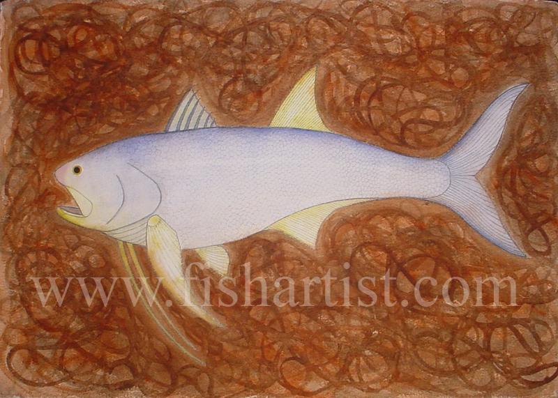 Kujeli - The Gambia Africa. - Fish Art for Fishermen.