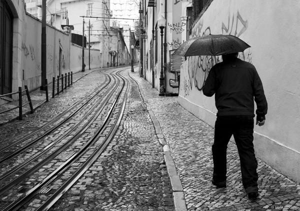 - Rain n' Brollies