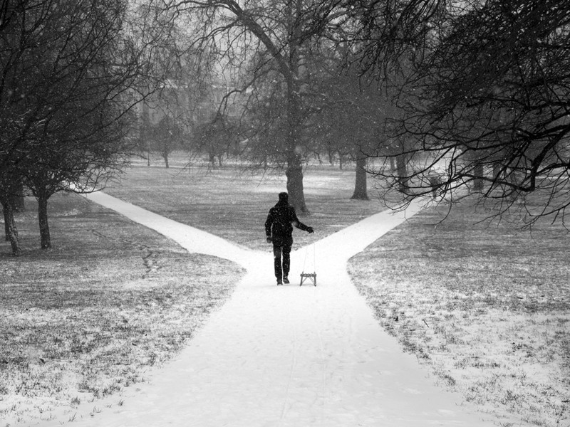 Primrose Hill - Winter Snow_3 - Winter Snow