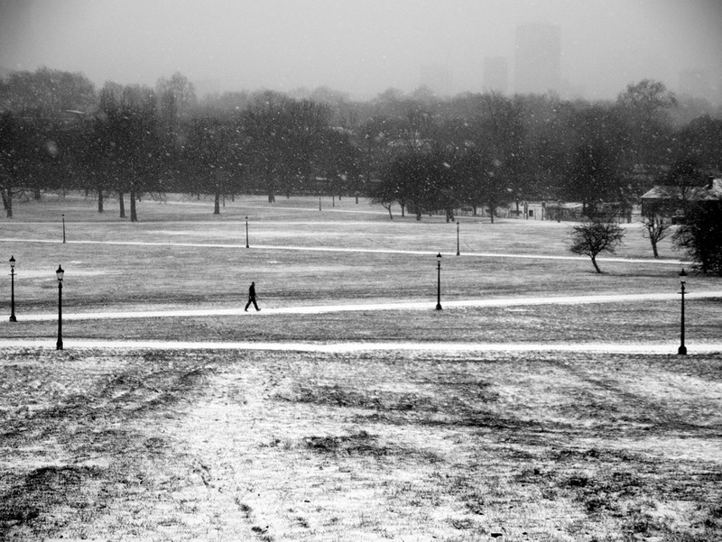 Primrose Hill - Winter Snow_1 - Winter Snow