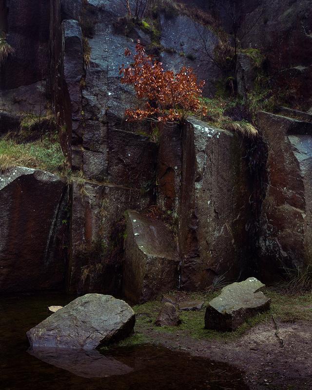 Quarry Wall - Portfolio