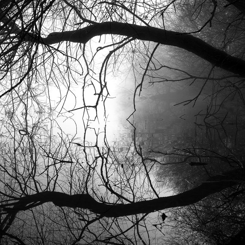 Reflections - Portfolio