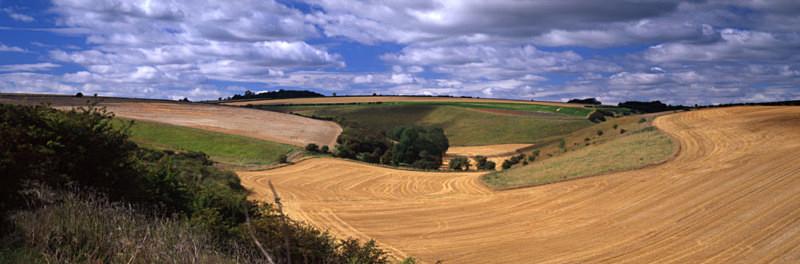 Field Swirls, Fridaythorpe - East Yorkshire