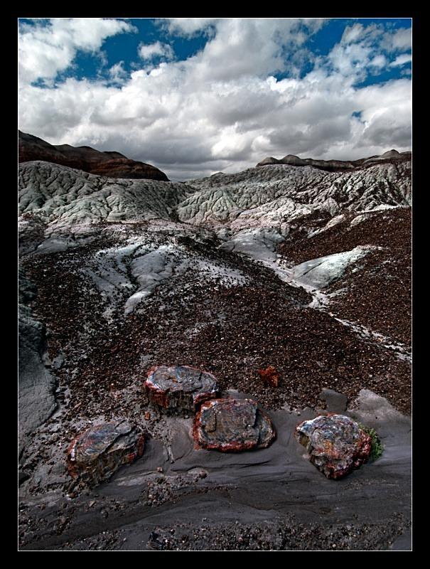 Petrified - Landscapes