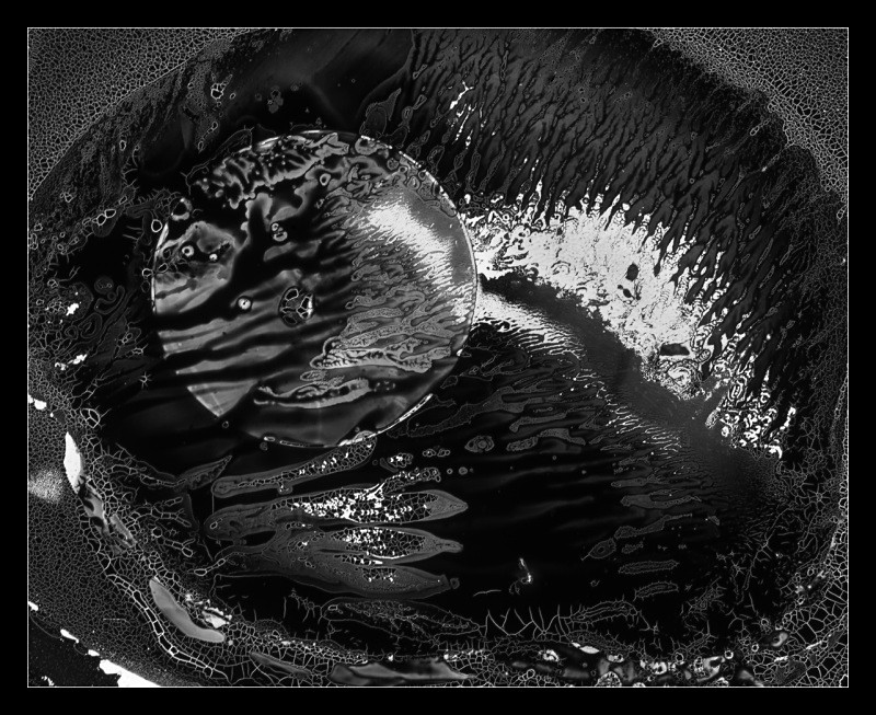 Nucleus - Cliché Verre Images