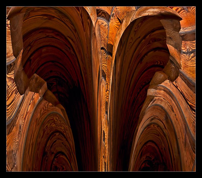 Caverns of Wood - Digital Distortion