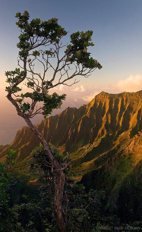 Evening Kalalau Valley - Kauai
