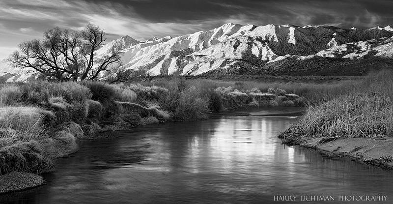 Sierra Frosting - Owens River - Black & White