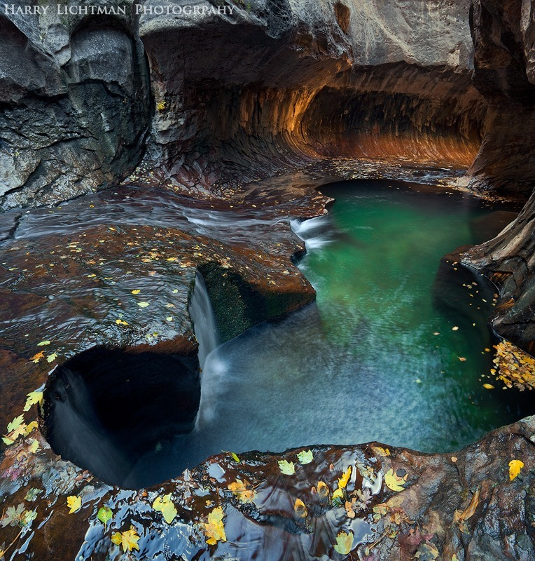 eden's underground