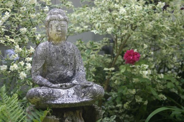Tranquil Garden - Garden & Flower Portraits