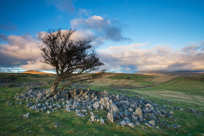 Solitude in the Brecon Beacons.