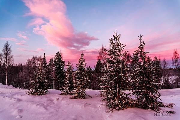 Lapland Christmas - Landscapes
