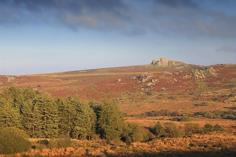 Haytor Rocks - Dartmoor Landscapes Prints
