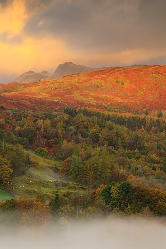 Distant Langdale Pikes