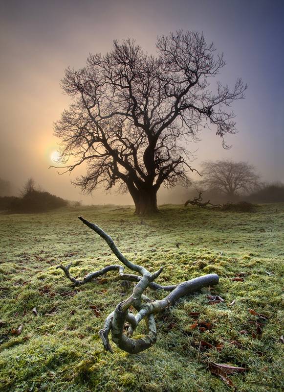 Frost & Fog - Co Armagh