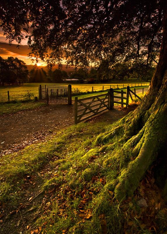 Autumn Morning Stroll - Co Armagh