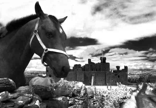 Middleham Castle and Richard III