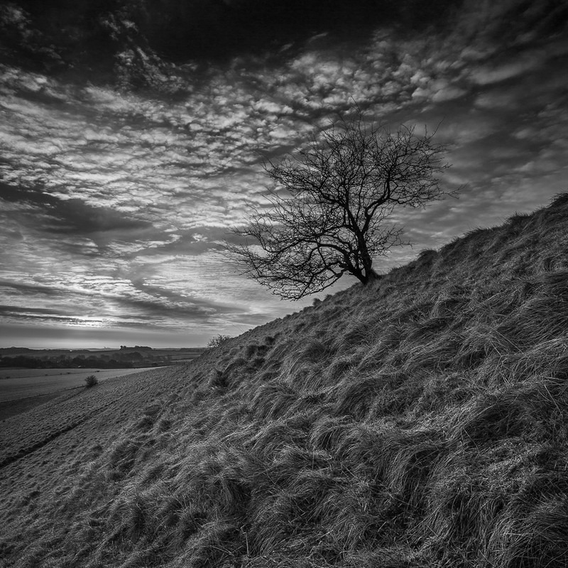 Maiden Castle Early Morning in March, Dorset (B&W) - Black & White Scenic