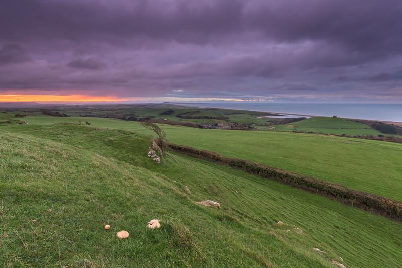 - Dorset Landscapes