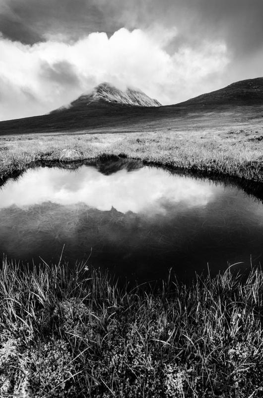 Forgotten Land - Black & White