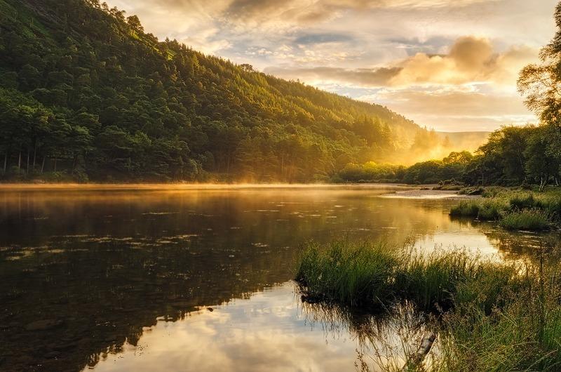 Misty Morning - Wicklow